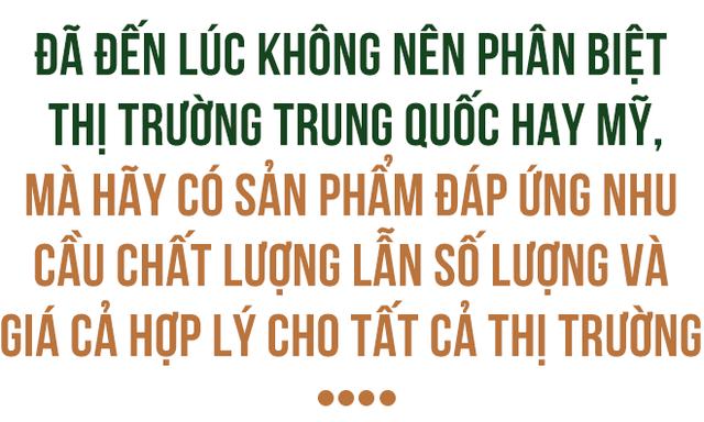 Đằng sau lô xoài Việt đầu tiên xuất khẩu sang đất Mỹ - Ảnh 8.