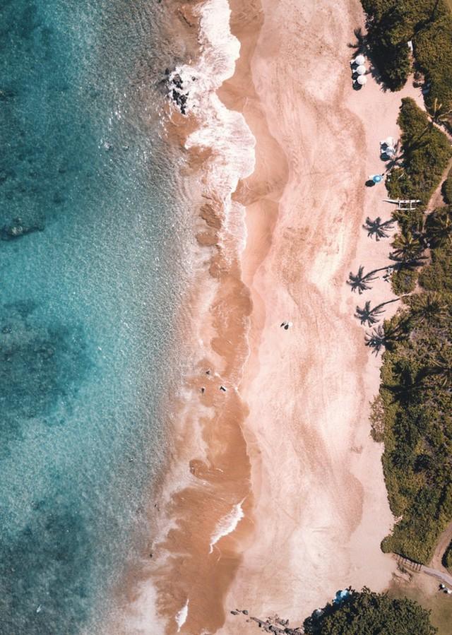 """Du khách """"ngã ngửa"""" toàn tập khi đến """"thiên đường biển"""" Hawaii vì tất cả những hình ảnh hiền hoà, thư giãn từng thấy trên mạng giờ chỉ còn là mộng tưởng - Ảnh 7."""