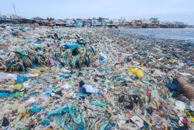 Ban cố vấn WeDo - Cuộc Chiến Trộm Nhựa: Sống xanh không quá khó khăn, nên chúng ta đừng làm khó mình quá - Ảnh 6.