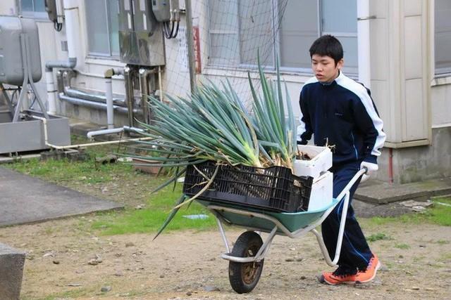 Trường học cô đơn nhất Nhật Bản: Mở cửa chỉ để đón 1 nam sinh, ngày anh chàng tốt nghiệp trường cũng đóng cửa luôn - Ảnh 3.