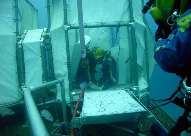 NASA huấn luyện các phi hành gia tham gia sứ mệnh Mặt Trăng trong phòng thí nghiệm dưới biển ở độ sâu 19 mét - Ảnh 5.