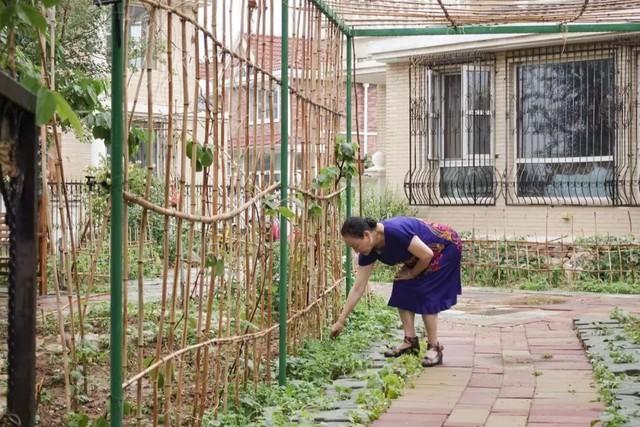Tình bạn trong mơ: 14 người già cô đơn tự thuê hai căn biệt thự ngoại ô cùng nhau sống trọn vẹn những năm tháng cuối đời - Ảnh 15.