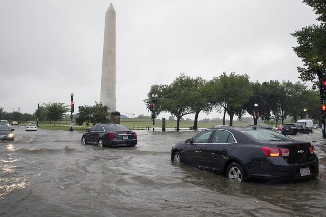 Video: Mưa lớn biến đường phố thủ đô Mỹ thành sông, Nhà Trắng cũng không thoát - Ảnh 4.