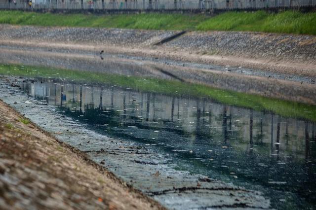 Sau khi xả nước hồ Tây vào sông Tô Lịch, thấy cá chết hàng loạt - Ảnh 2.