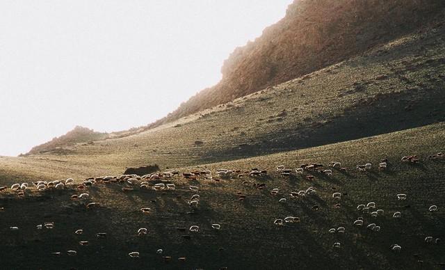 """Hành trình 2 tháng ngao du trên Con đường Tơ lụa của nữ nhiếp ảnh gia Hà Nội: Xứng tầm hai chữ """"huyền thoại""""! - Ảnh 24."""