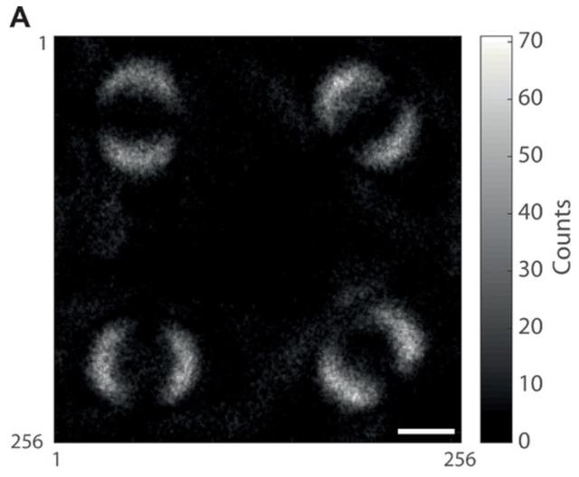 Bức ảnh đầu tiên chụp được hiện tượng vướng lượng tử, thứ Einstein từng gọi là tác động ma quái - Ảnh 3.
