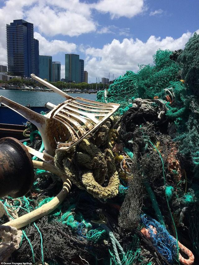 Trục vớt được hàng tấn loại rác kinh khủng hơn cả túi nhựa và ống hút, gây ám ảnh đại dương trong suốt thời gian dài - Ảnh 5.