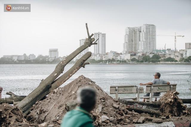"""Cận cảnh cuộc di cư của gần trăm cây hoa sữa từ hồ Tây ra bãi rác Nam Sơn để """"khử mùi"""" - Ảnh 12."""