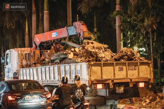 """Cận cảnh cuộc di cư của gần trăm cây hoa sữa từ hồ Tây ra bãi rác Nam Sơn để """"khử mùi"""" - Ảnh 4."""