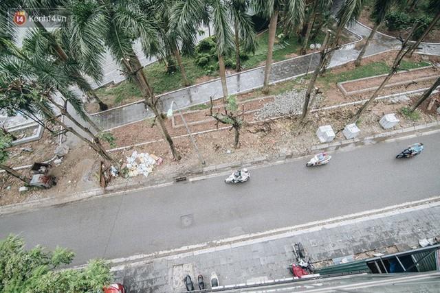 """Cận cảnh cuộc di cư của gần trăm cây hoa sữa từ hồ Tây ra bãi rác Nam Sơn để """"khử mùi"""" - Ảnh 6."""