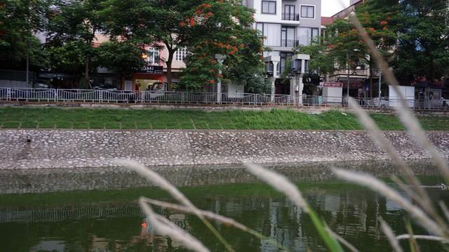 Nếu thời tiết không ủng hộ, sẽ lùi thí điểm xử lý ô nhiễm sông Tô Lịch sang mùa khô - Ảnh 1.