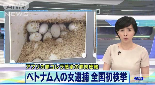 Nữ sinh Việt bị bắt vì mang nem chua chứa virus tả lợn vào Nhật Bản - Ảnh 2.
