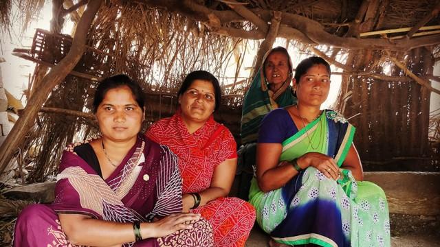 Câu chuyện đau xót về làng phụ nữ không tử cung bên những cánh đồng mía ở Ấn Độ - Ảnh 2.