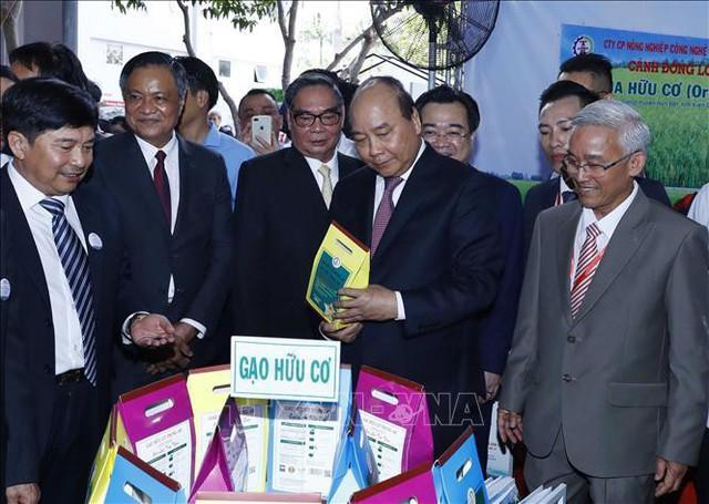 Thủ tướng: Không được bê tông hóa Phú Quốc - Ảnh 5.