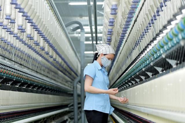 EVFTA sẽ tác động thế nào đến ngành dệt may, thủy sản, gỗ Việt Nam? - Ảnh 1.