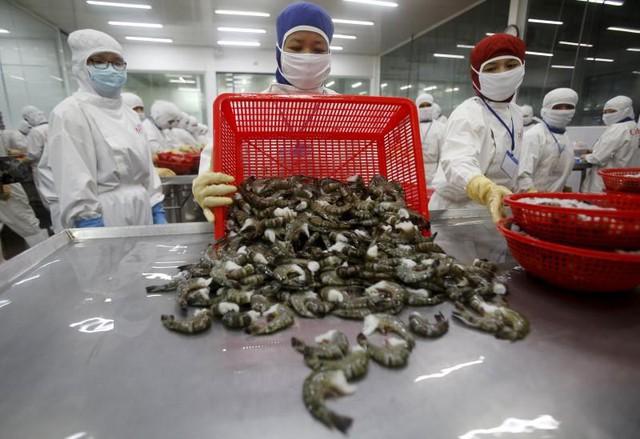 EVFTA sẽ tác động thế nào đến ngành dệt may, thủy sản, gỗ Việt Nam? - Ảnh 2.