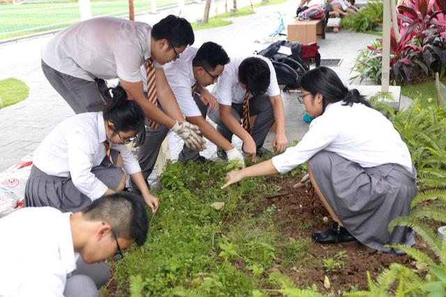 Ở Hà Nội có một ngôi trường không bao giờ thả bóng bay ngày khai giảng, học sinh có hàng loạt dự án biến chai nhựa thành gạch xây trường - Ảnh 19.