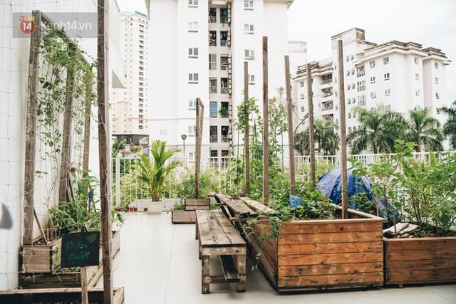 Ở Hà Nội có một ngôi trường không bao giờ thả bóng bay ngày khai giảng, học sinh có hàng loạt dự án biến chai nhựa thành gạch xây trường - Ảnh 6.