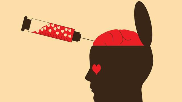 Sapiosexual - Khi ngoại hình nóng bỏng cũng không bằng một bộ não thông minh hay chuyện yêu đương đến từ hai cái đầu đặc chữ - Ảnh 1.