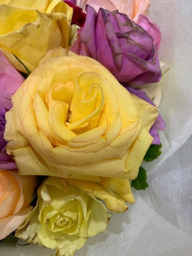 Bán hoa héo, shop hoa của soái ca khởi nghiệp Shark Khoa bị dân tình chê: Cửa hàng toàn ca sĩ diễn viên đặt không mà... - Ảnh 6.