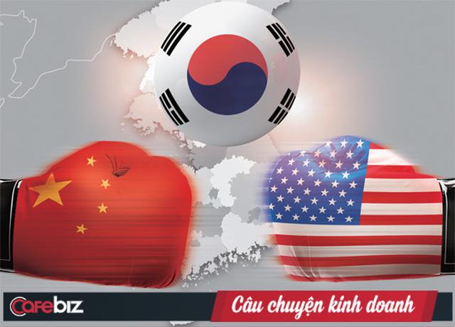 """Chaebol Hàn Quốc """"chịu đòn"""" từ chiến tranh thương mại: Samsung, SK, Lotte... đồng loạt tụt dốc không phanh, lợi nhuận bị cuốn bay mất cả một nửa - Ảnh 2."""