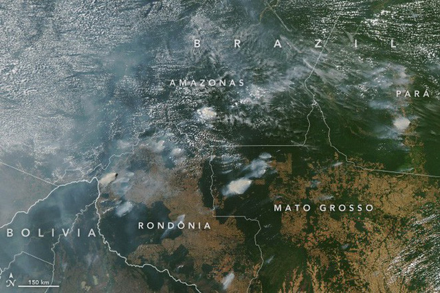 Rừng Amazon cháy lớn, khói phủ đen trời ở thành phố cách cả ngàn kilomet, từ trên quỹ đạo cũng nhìn được khói - Ảnh 1.