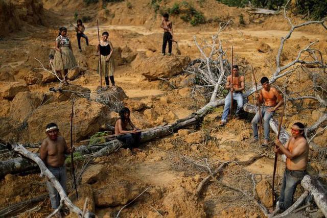 Giải thích trọn vẹn: Chuyện gì đang xảy đến với rừng già Amazon và bạn làm được gì để cứu lấy nó? - Ảnh 13.