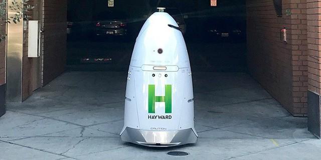 Đã tìm ra nghi phạm khiến cho robot tuần tra buộc mình phải tự tử - Ảnh 3.