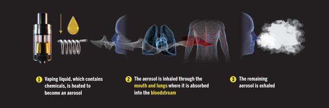 Chỉ một lần thử hút thuốc lá điện tử cũng làm biến đổi mạch máu và hệ thống tuần hoàn của bạn - Ảnh 2.