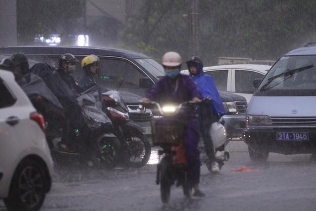 Cây xanh đổ khắp Hà Nội do ảnh hưởng của bão số 4, một thanh niên 26 tuổi tử vong thương tâm - Ảnh 16.