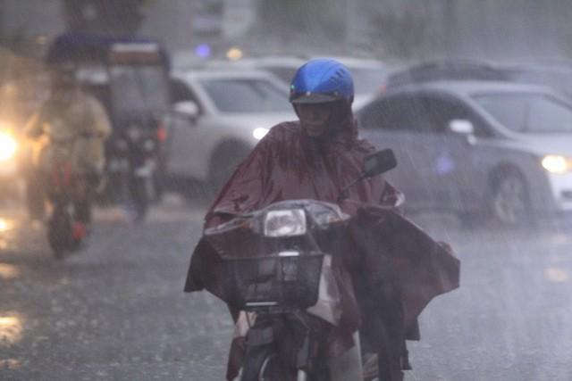 Cây xanh đổ khắp Hà Nội do ảnh hưởng của bão số 4, một thanh niên 26 tuổi tử vong thương tâm - Ảnh 17.