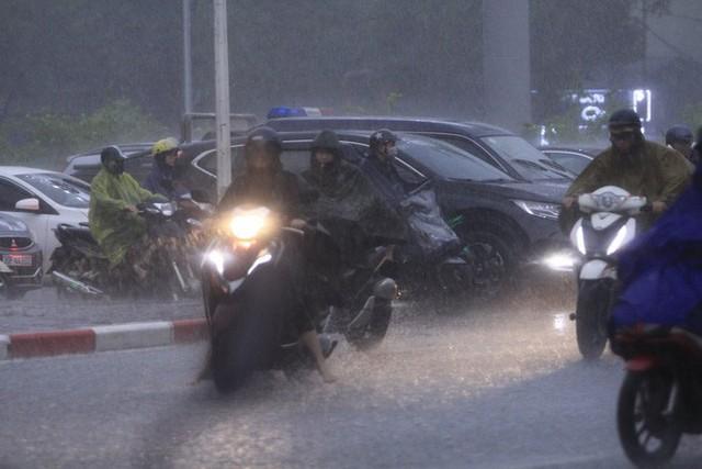 Cây xanh đổ khắp Hà Nội do ảnh hưởng của bão số 4, một thanh niên 26 tuổi tử vong thương tâm - Ảnh 19.