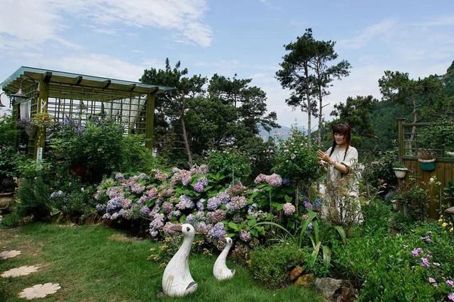 Ngôi nhà trên đồi với tầm nhìn xanh mát yên bình của người phụ nữ nghỉ hưu ở tuổi 42, rời thành thị về quê sinh sống - Ảnh 1.