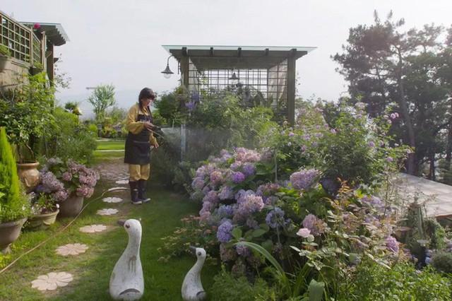 Ngôi nhà trên đồi với tầm nhìn xanh mát yên bình của người phụ nữ nghỉ hưu ở tuổi 42, rời thành thị về quê sinh sống - Ảnh 2.