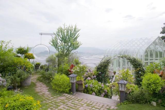 Ngôi nhà trên đồi với tầm nhìn xanh mát yên bình của người phụ nữ nghỉ hưu ở tuổi 42, rời thành thị về quê sinh sống - Ảnh 20.