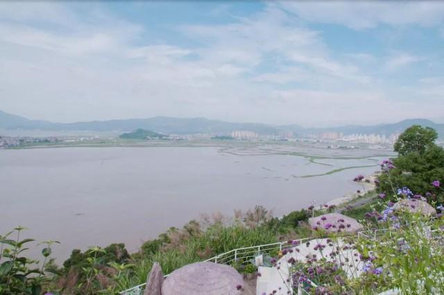 Ngôi nhà trên đồi với tầm nhìn xanh mát yên bình của người phụ nữ nghỉ hưu ở tuổi 42, rời thành thị về quê sinh sống - Ảnh 5.