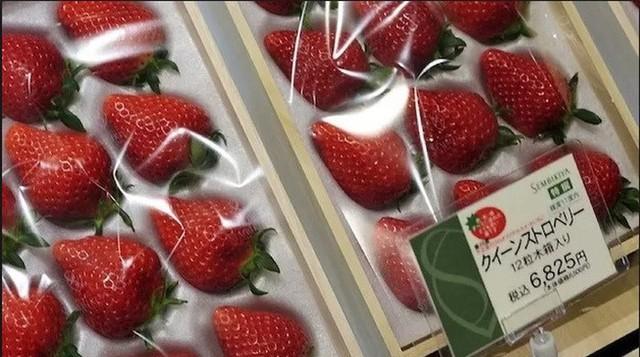 Bên trong cửa hàng trái cây tươi đắt nhất Nhật Bản - Ảnh 3.
