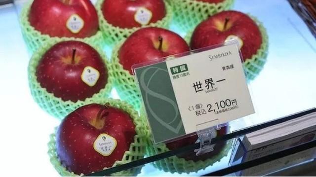 Bên trong cửa hàng trái cây tươi đắt nhất Nhật Bản - Ảnh 4.