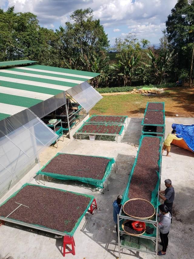 Chàng trai 9X và những người bạn nông dân trên hành trình nâng cao giá trị cà phê Việt Nam - Ảnh 4.