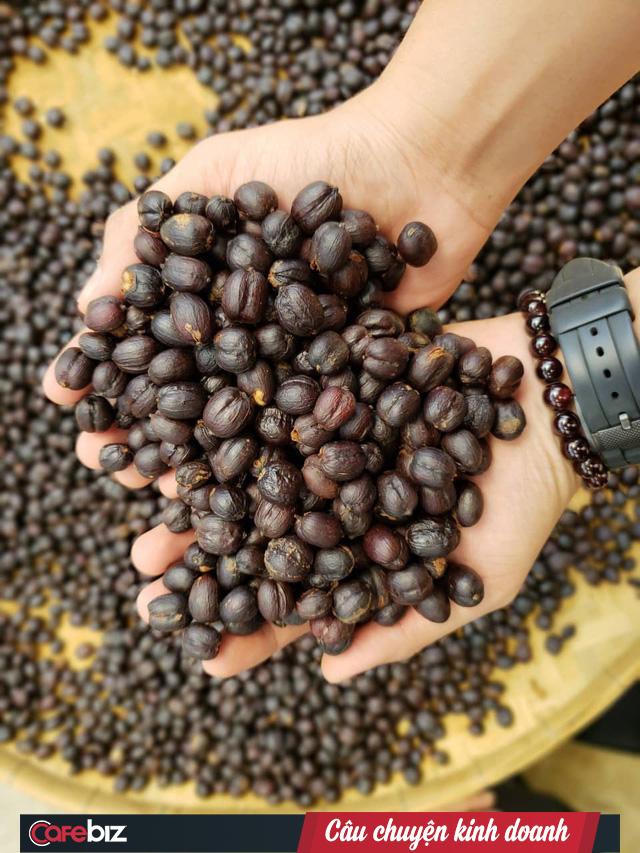 Chàng trai 9X và những người bạn nông dân trên hành trình nâng cao giá trị cà phê Việt Nam - Ảnh 1.