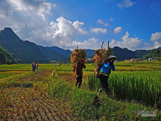 Cảnh sắc đẹp nhất thế giới mỗi năm 1 lần chỉ có ở Việt Nam - Ảnh 15.