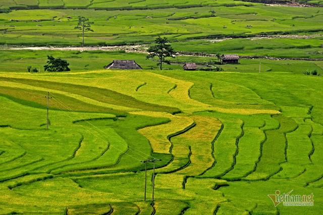 Cảnh sắc đẹp nhất thế giới mỗi năm 1 lần chỉ có ở Việt Nam - Ảnh 16.