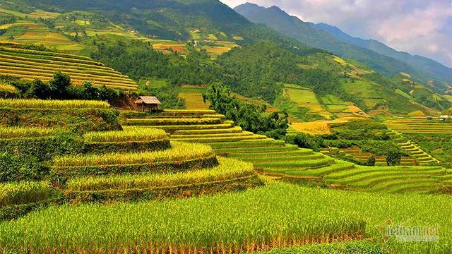 Cảnh sắc đẹp nhất thế giới mỗi năm 1 lần chỉ có ở Việt Nam - Ảnh 4.
