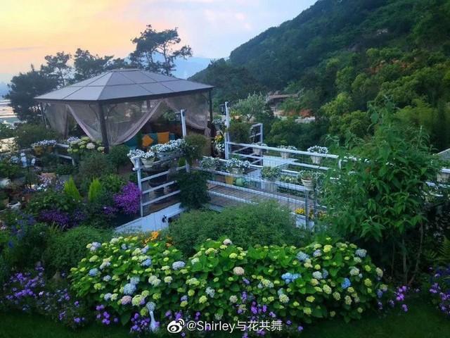 Người phụ nữ 40 tuổi nghỉ hưu sớm, dùng tiền dành dụm cả đời để đổi lấy khu vườn rực rỡ như thiên đường trên đồi hướng biển - Ảnh 1.