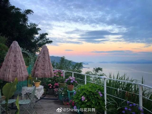 Người phụ nữ 40 tuổi nghỉ hưu sớm, dùng tiền dành dụm cả đời để đổi lấy khu vườn rực rỡ như thiên đường trên đồi hướng biển - Ảnh 2.