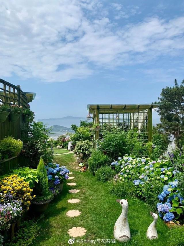 Người phụ nữ 40 tuổi nghỉ hưu sớm, dùng tiền dành dụm cả đời để đổi lấy khu vườn rực rỡ như thiên đường trên đồi hướng biển - Ảnh 15.