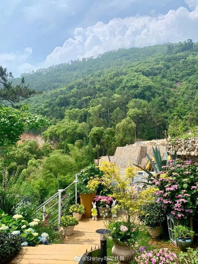 Người phụ nữ 40 tuổi nghỉ hưu sớm, dùng tiền dành dụm cả đời để đổi lấy khu vườn rực rỡ như thiên đường trên đồi hướng biển - Ảnh 4.
