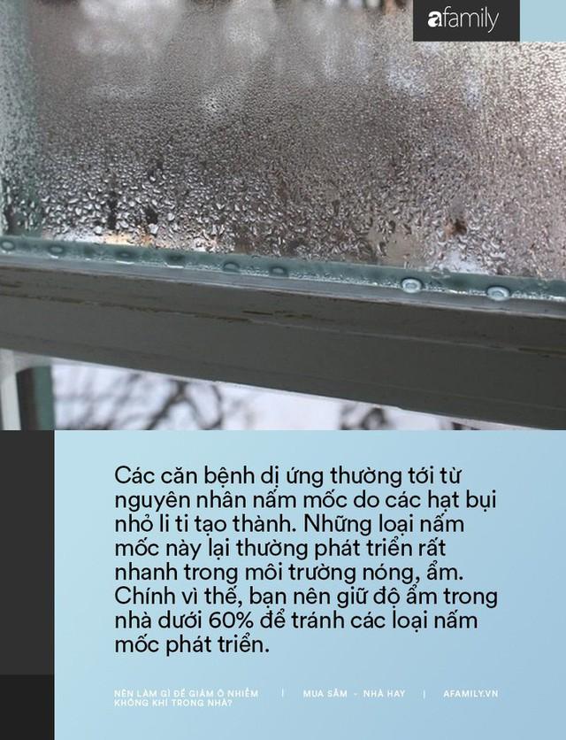 11 cách bạn có thể làm để giảm ô nhiễm không khí trong nhà trong những ngày Hà Nội, Sài Gòn đều ô nhiễm nặng nề - Ảnh 6.