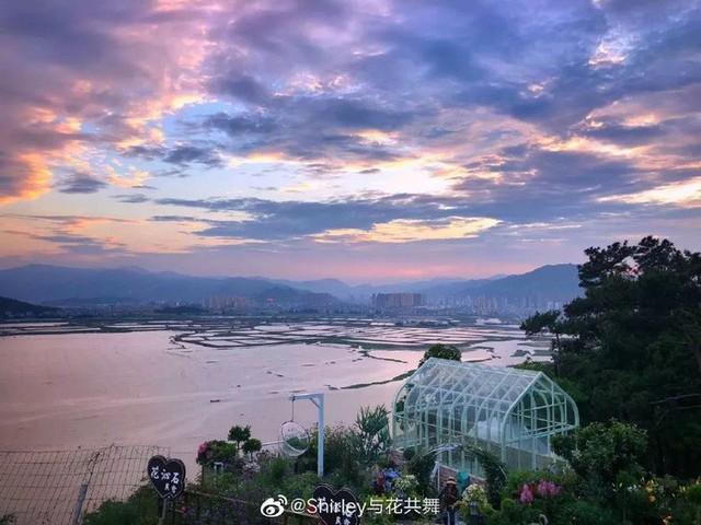 Người phụ nữ 40 tuổi nghỉ hưu sớm, dùng tiền dành dụm cả đời để đổi lấy khu vườn rực rỡ như thiên đường trên đồi hướng biển - Ảnh 9.