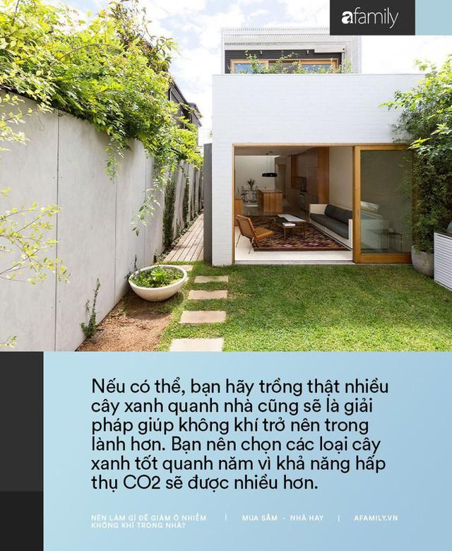11 cách bạn có thể làm để giảm ô nhiễm không khí trong nhà trong những ngày Hà Nội, Sài Gòn đều ô nhiễm nặng nề - Ảnh 9.